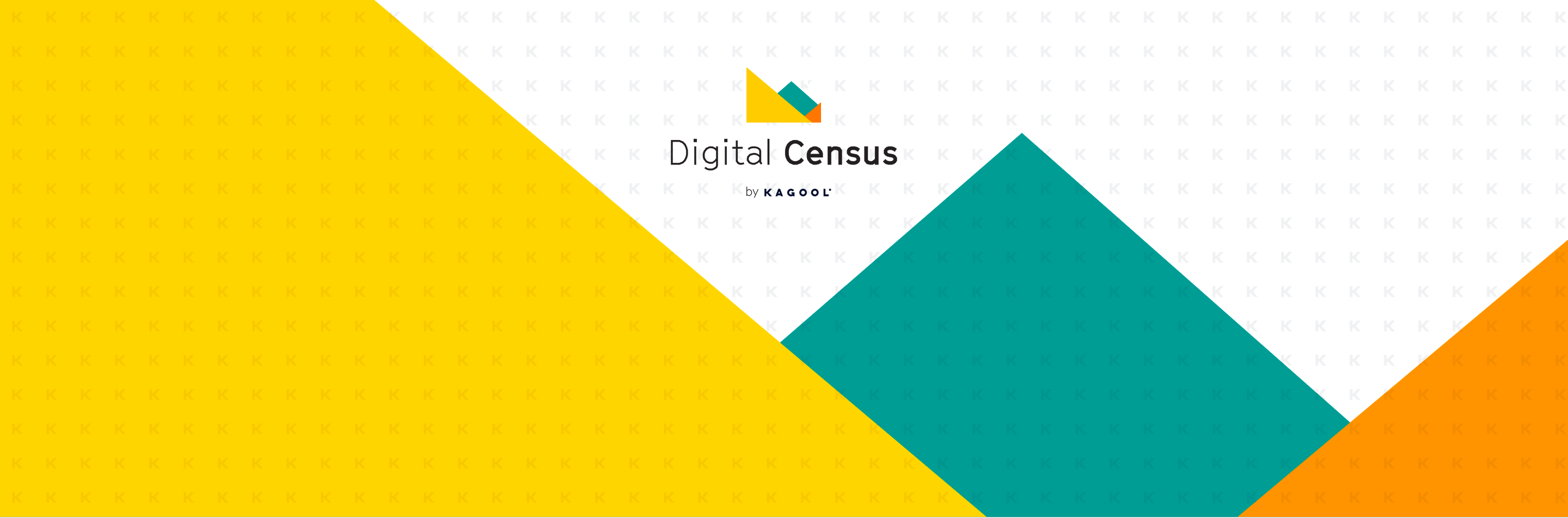 digital-census-hub-header