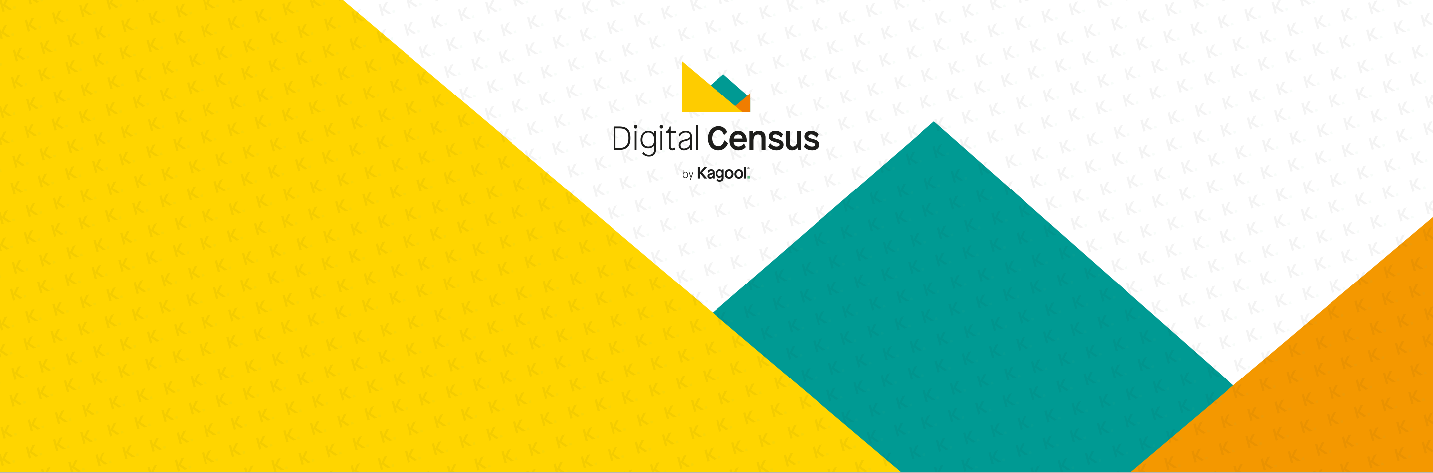 Digital Census Hub Header.png